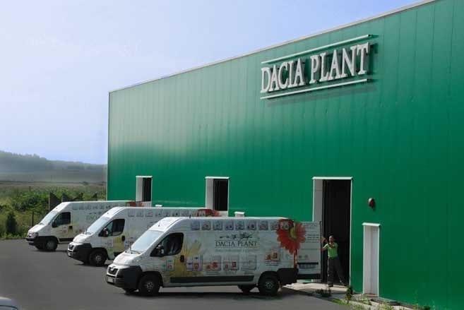 - dacia plant - Dacia Plant a lansat un nou produs românesc de igienizare a mâinilor. Capacitatea de producție: 55.000 de flacoane pe lună