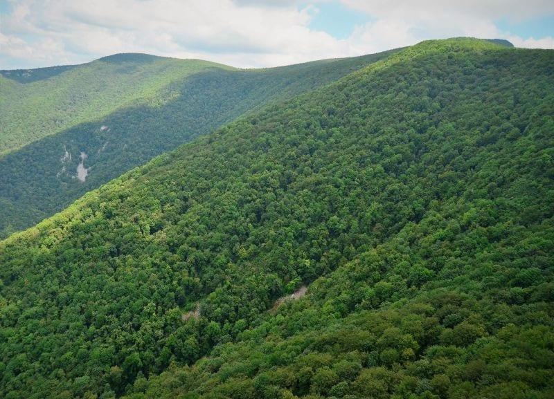 - FOTO ROMSILVA PARCURI - Romsilva a publicat harta parcurilor naționale și naturale