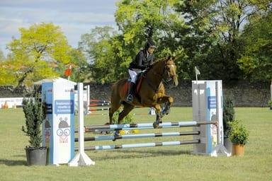 - 5 - FOTO: Spectacol ecvestru de top pentru 12.000 de spectatori la Karpatia Horse Show