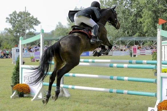 - 8 585x390 - FOTO: Spectacol ecvestru de top pentru 12.000 de spectatori la Karpatia Horse Show